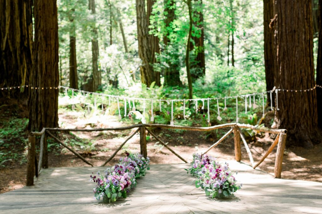 Redwoods, flowers, string lights