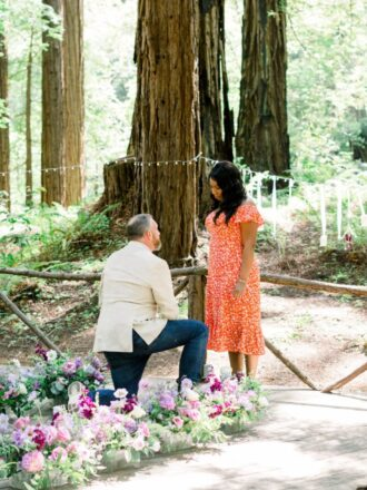 Redwoods, flowers. proposal