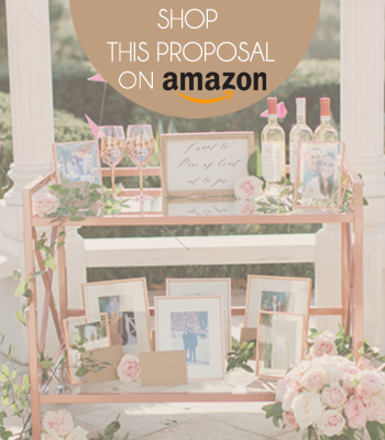 wine tasting marriage proposal on amazon shop