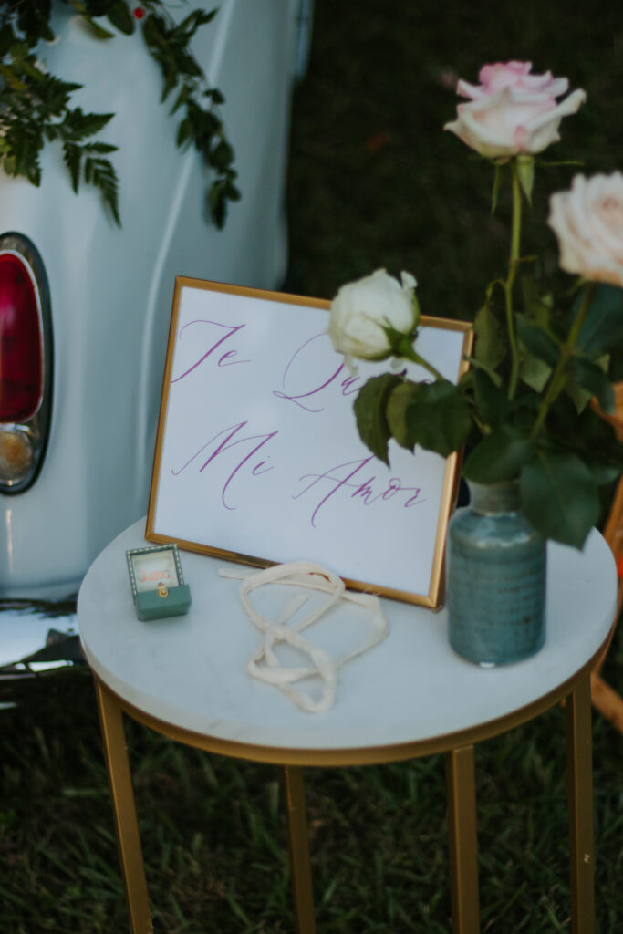 Decor for Proposal in Roopville, Georgia