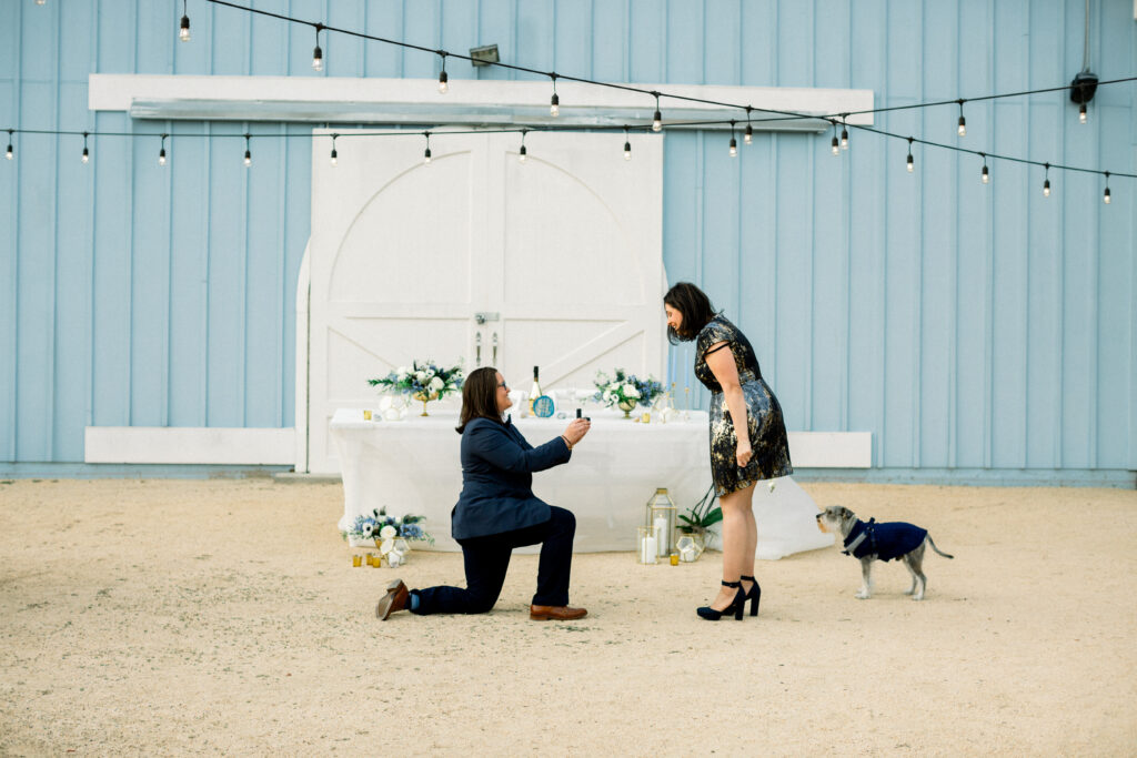 down on one knee marriage proposal