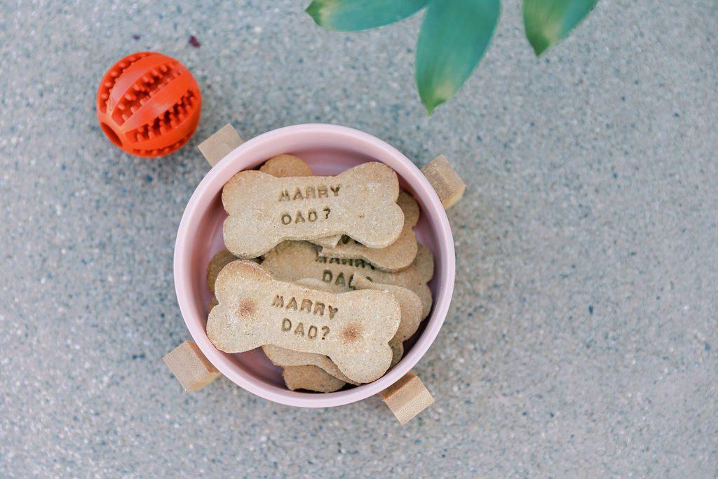 marry dad dog bone
